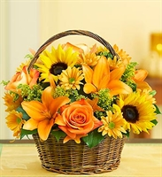 Fields of Europe for Fall Basket - Deluxe