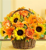 Fields of Europe for Fall Basket - Premium