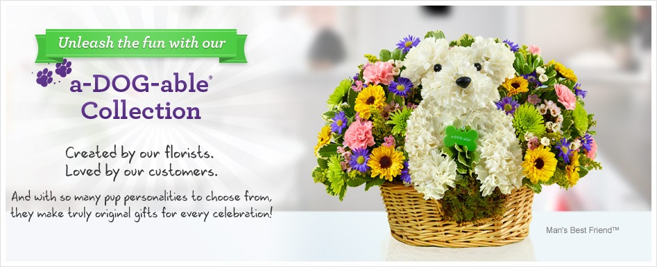 adogable series the florist family adogable collections